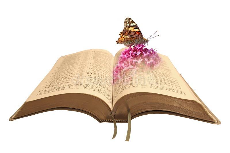 Livre de bible de création images libres de droits