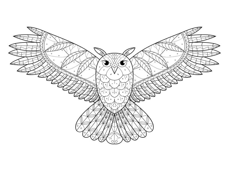 Download Livre De Coloriage De Hibou Pour Le Vecteur D'adultes Illustration de Vecteur - Illustration du illustration, décor: 77152134