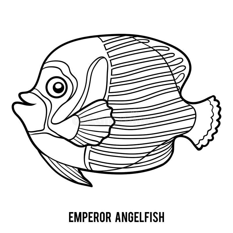 Livre de coloriage, scalaire d'empereur illustration stock