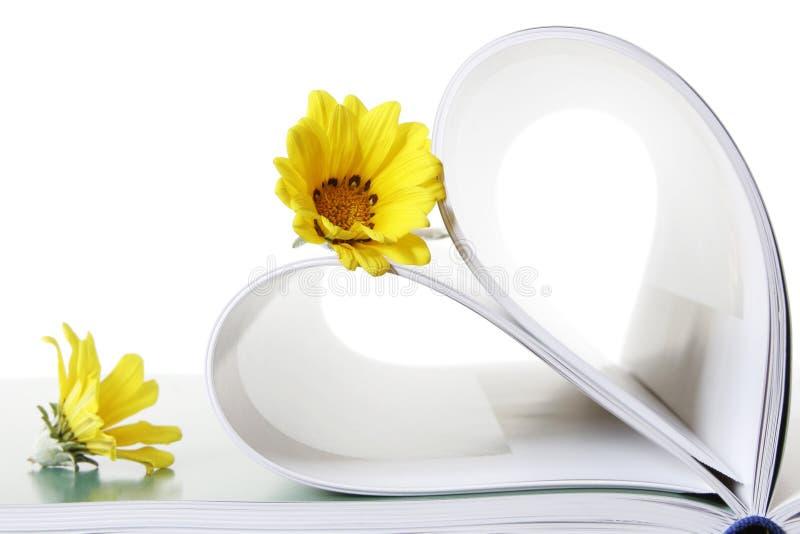 Livre et fleurs image stock