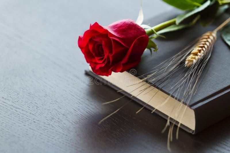 Livre noir avec la rose de rouge image stock