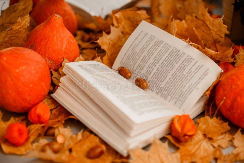 Livre ouvert avec des feuilles photo libre de droits