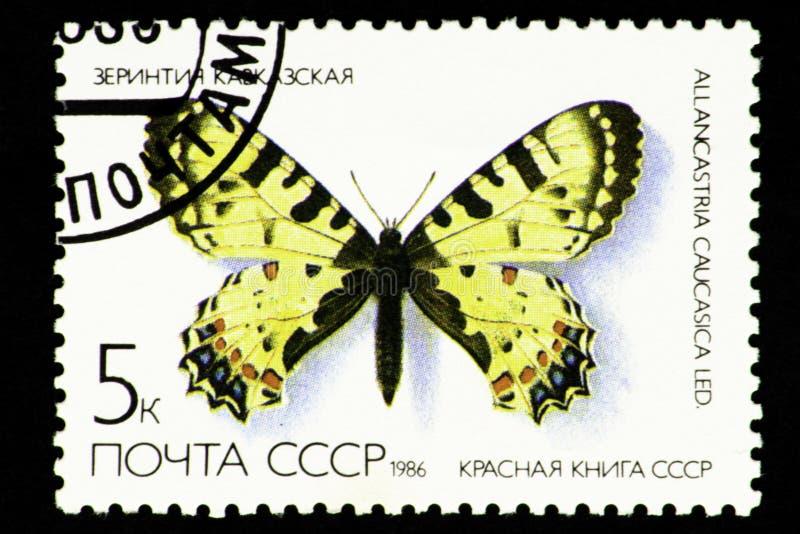 07 24 2019 livres rouges du timbre-poste de la Russie URSS de territoire de Divnoe Stavropol 1986 - série - de l'URSS, Caucasien  illustration de vecteur