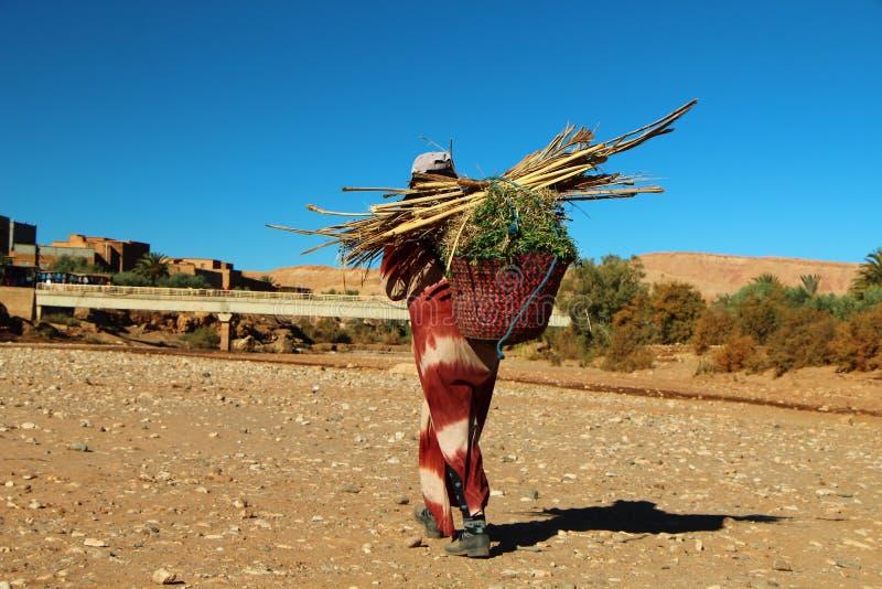 Livreur en bambou au Maroc images stock