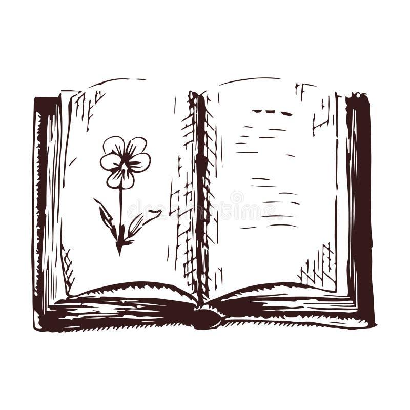 Livro aberto com ilustração do vetor da gravura do esboço da viola fotografia de stock royalty free