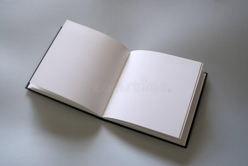 Livro aberto da planície imagem de stock