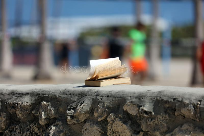 Livro aberto perdido no vento da praia em Miami Florida fotos de stock
