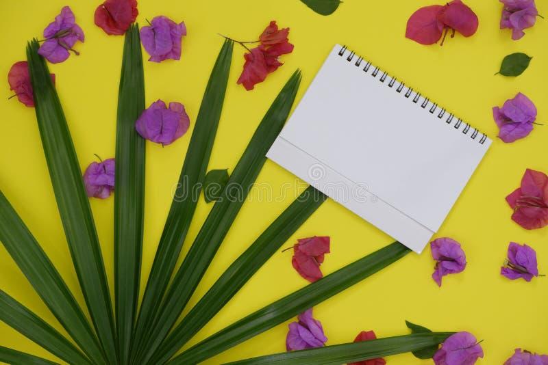 Livro Branco do modelo com espaço para o texto ou imagem no fundo amarelo e folha de palmeira e flores tropicais fotografia de stock royalty free