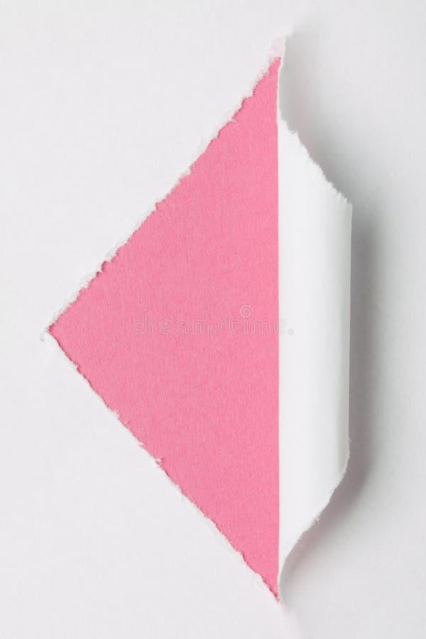 Livro Branco rasgado fotografia de stock
