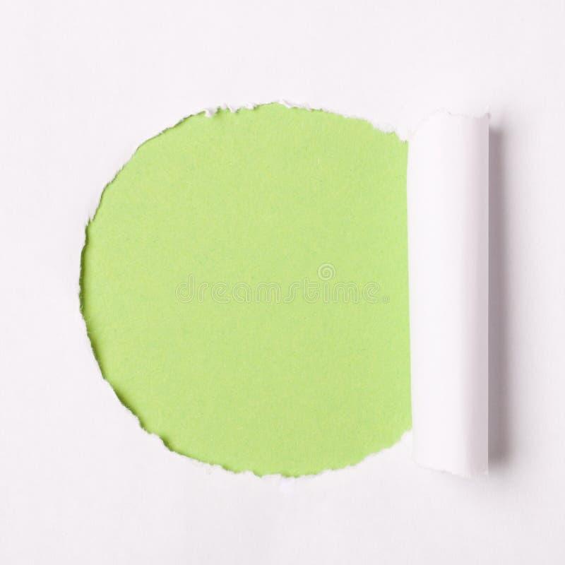 Livro Branco rasgado imagens de stock royalty free