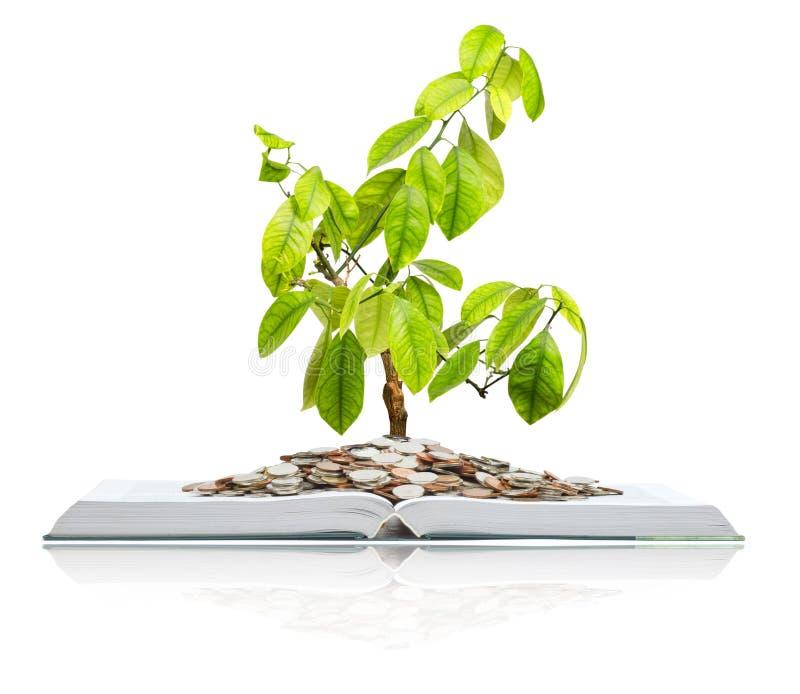 Livro com moedas e árvore. foto de stock