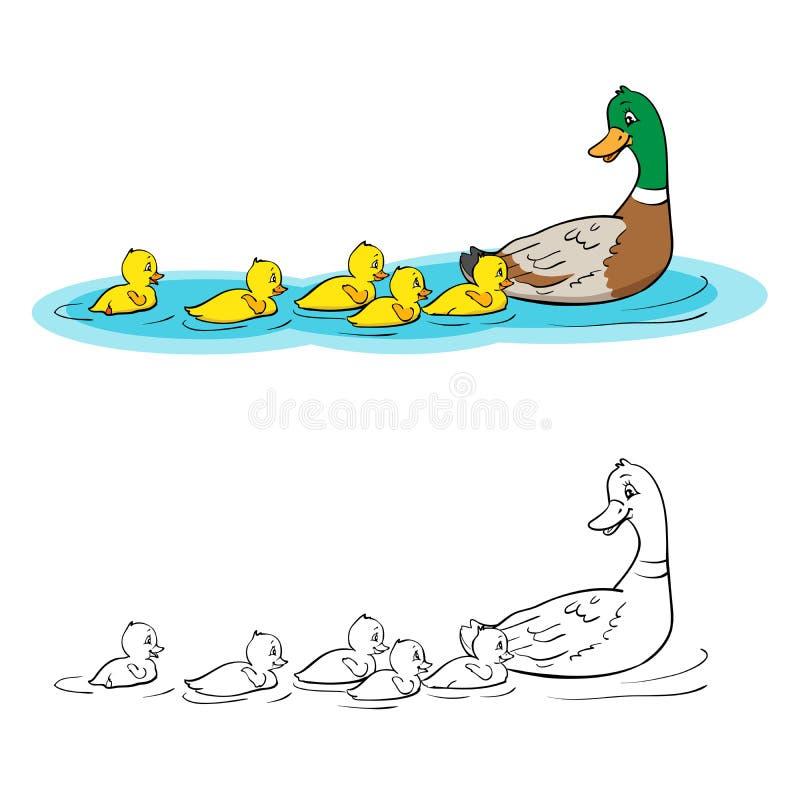 Livro de coloração Pato e patinhos da mãe ilustração do vetor
