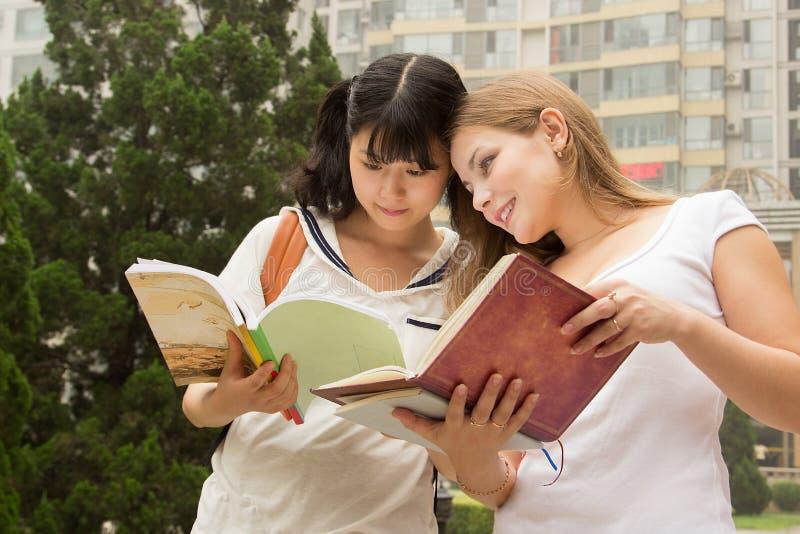 Livro de leitura das jovens mulheres no parque verde imagens de stock royalty free