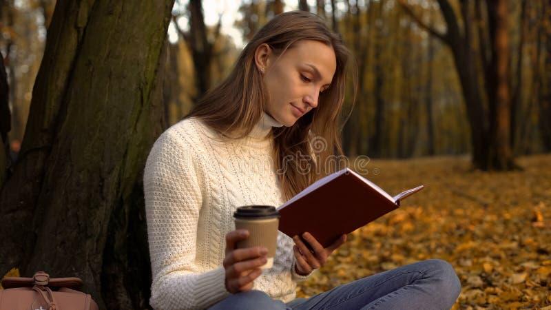 Livro de leitura do estudante fêmea, assento no parque bonito no dia morno do outono imagens de stock