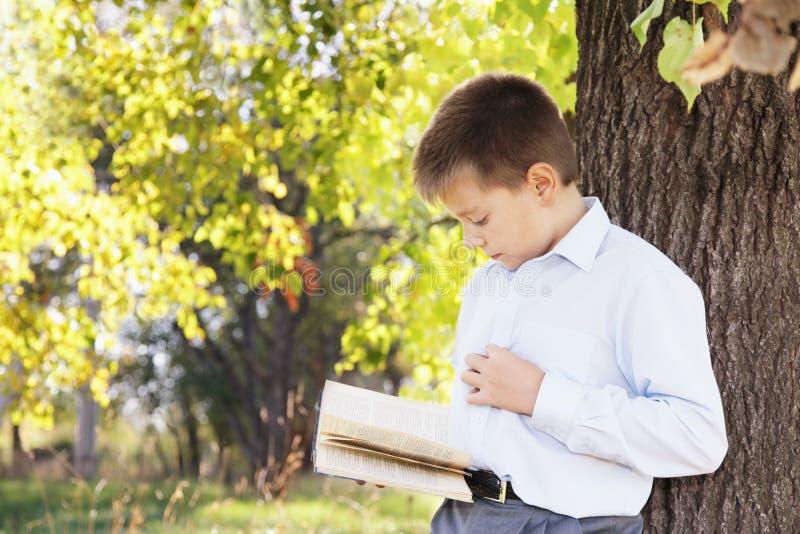 Livro de leitura do menino no parque imagem de stock
