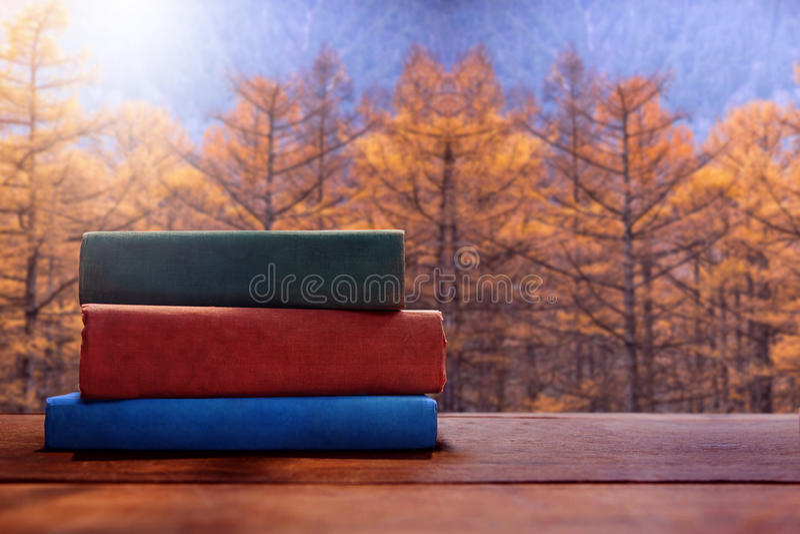 Livro de leitura no conceito da queda ou do Autumn Season, FO amarelas borradas imagem de stock