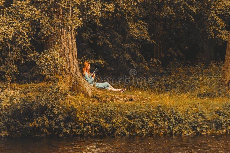 Livro de leitura novo da mulher do ruivo no parque do outono foto de stock