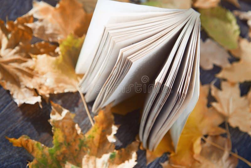 Livro do outono imagens de stock royalty free