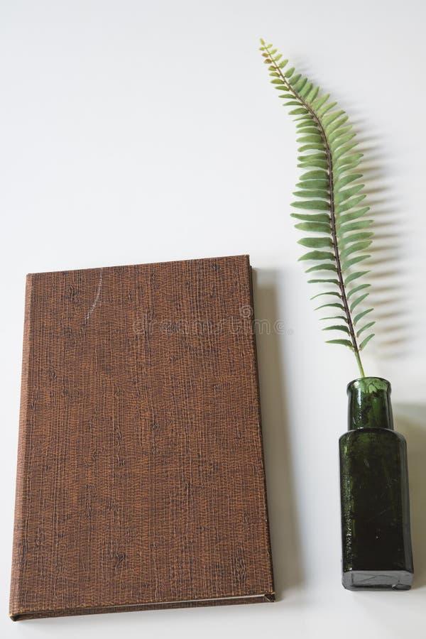 Livro do vintage de Brown com potenciômetro e galho da tinta, na mesa branca imagem de stock