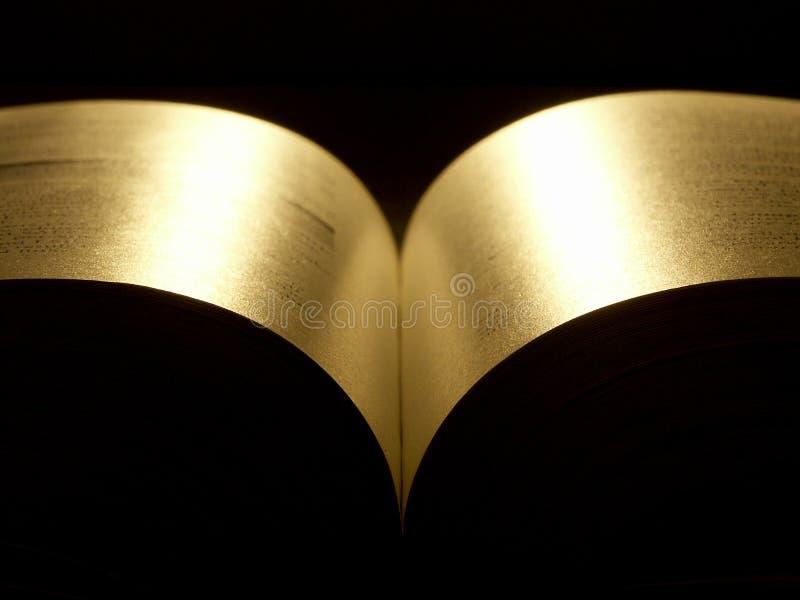 Livro dourado foto de stock royalty free