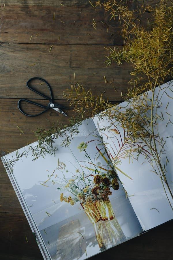 Livro e ramo amarelo imagens de stock royalty free