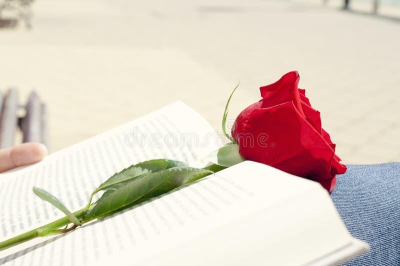 Livro e rosa do vermelho para Sant Jordi, Saint Georges Day, em Cataloni imagens de stock royalty free