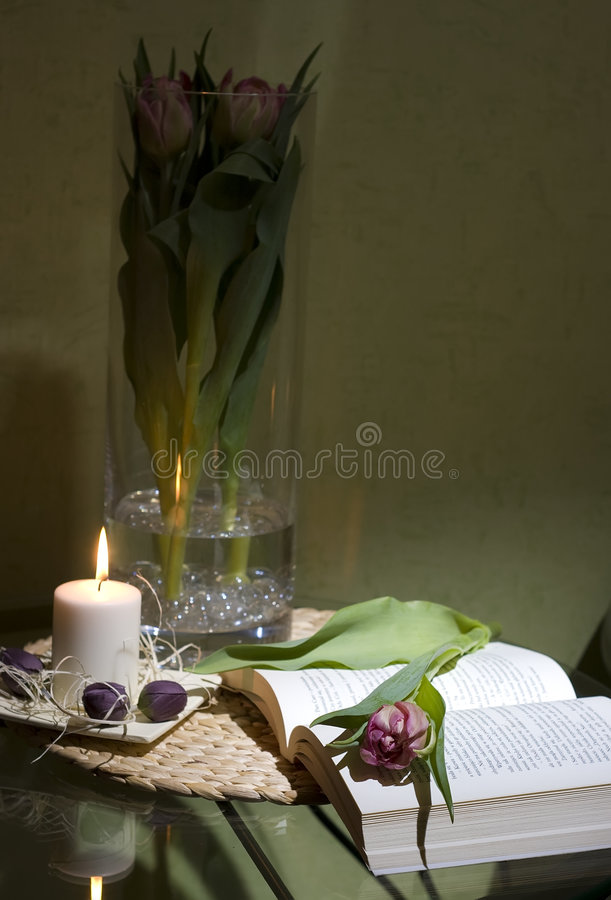 Livro e tulip fotografia de stock