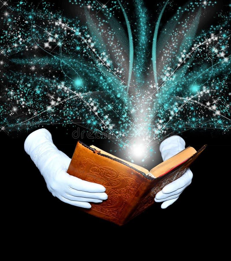 Livro mágico ilustração royalty free