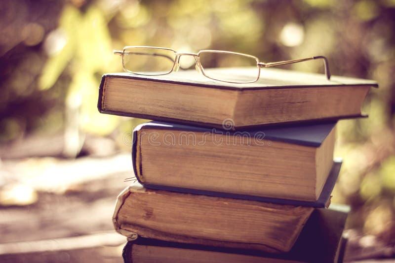 Livro na natureza foto de stock