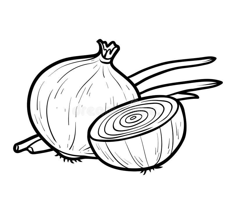 Livro para colorir, cebola branca ilustração royalty free