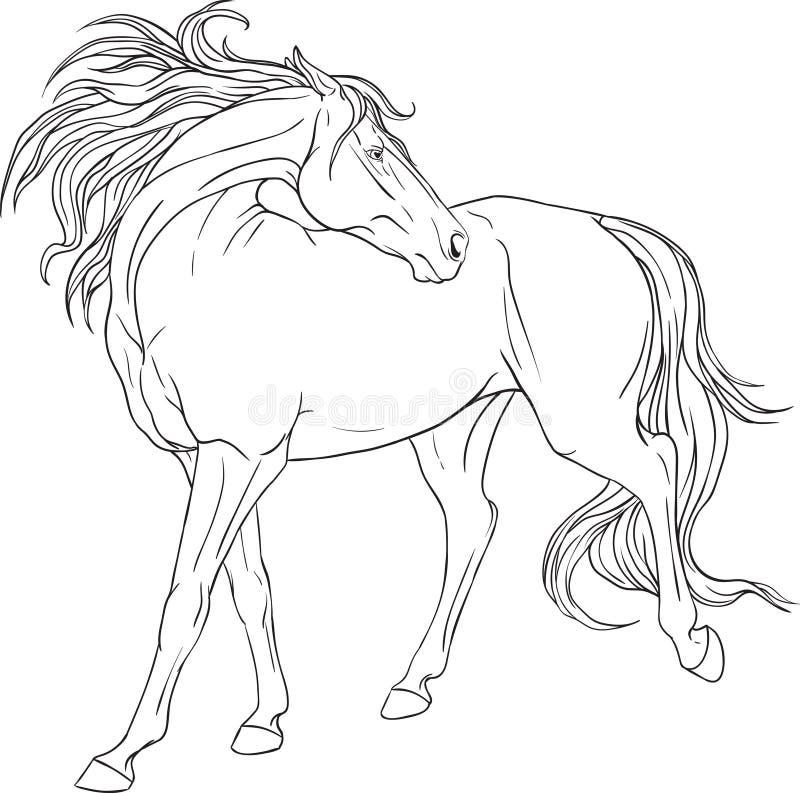 livro para colorir com um cavalo ilustração do vetor