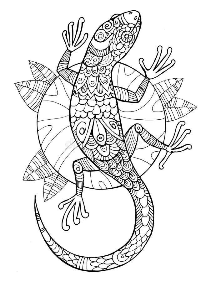 Livro para colorir do lagarto para o vetor dos adultos ilustração do vetor