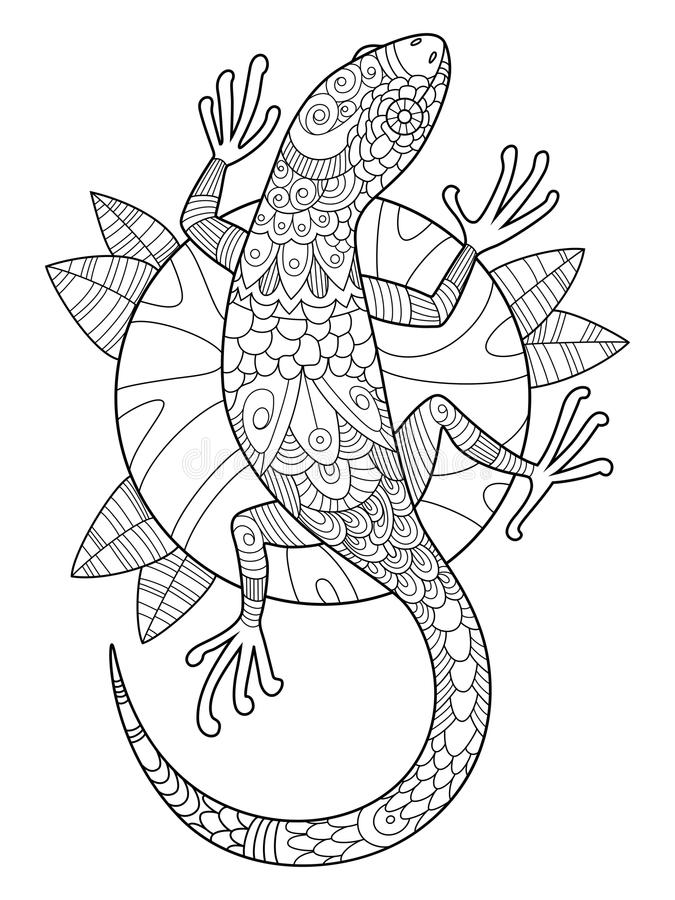 Livro para colorir do lagarto para o vetor dos adultos ilustração royalty free