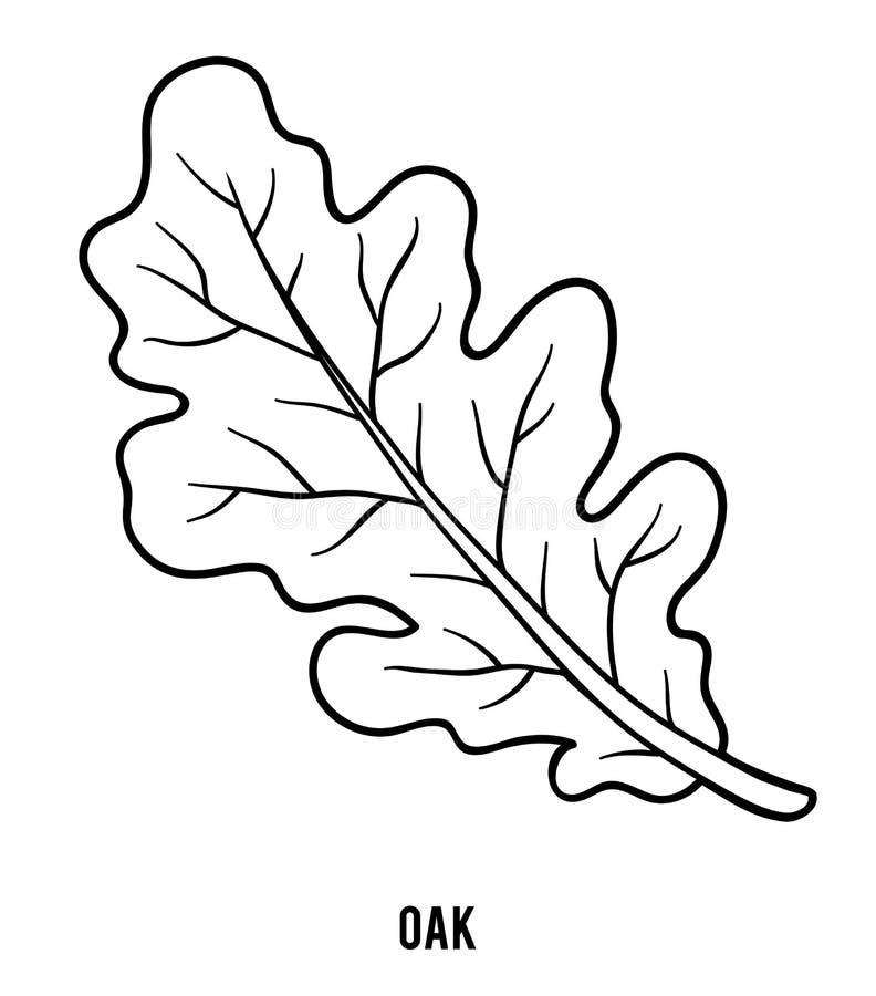 Livro para colorir, folha do carvalho