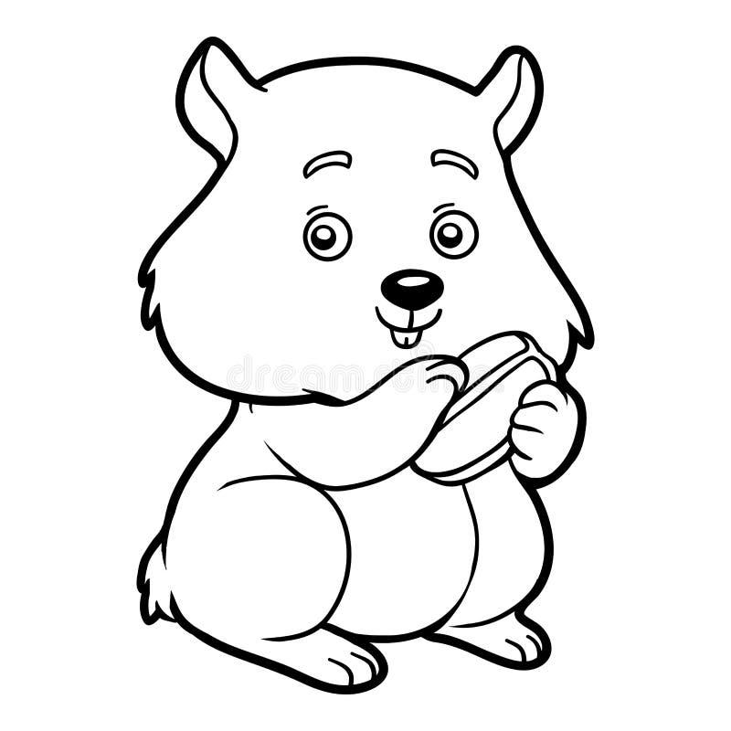 Livro para colorir, hamster ilustração royalty free