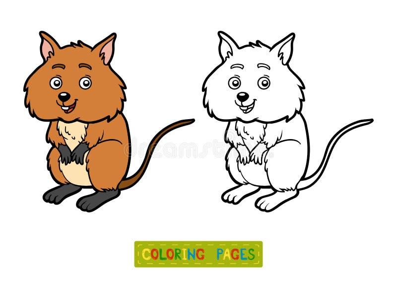 Livro para colorir, Quokka ilustração stock
