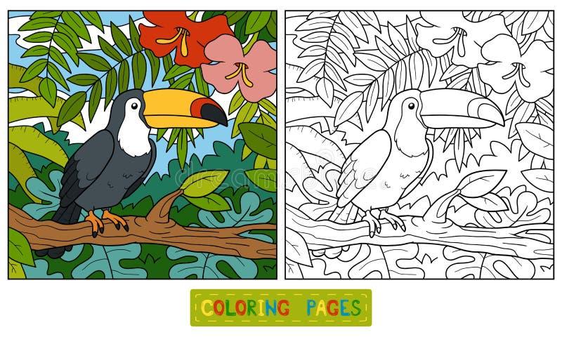 Livro para colorir (tucano e fundo) ilustração royalty free