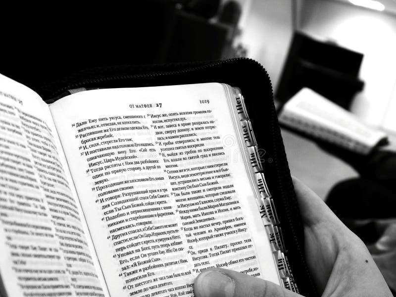Livro, scripture, a Bíblia nas mãos foto de stock royalty free