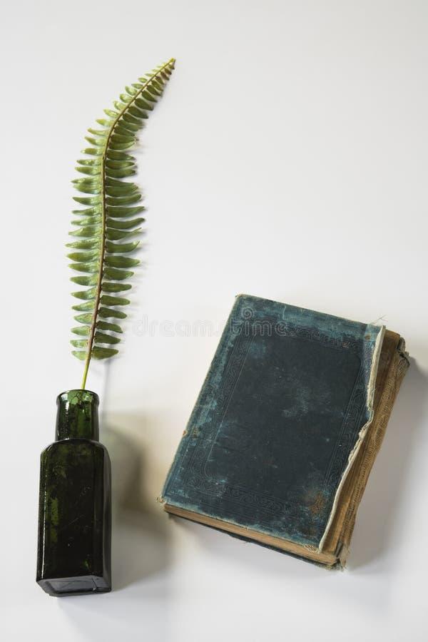 Livro verde do vintage com potenciômetro e galho da tinta, na mesa branca fotos de stock