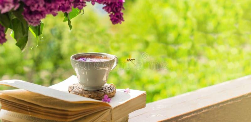 Livro, vidros, copo do chá e lilás em uma janela de madeira As moscas de abelha belamente sobre as pétalas lilás imagens de stock