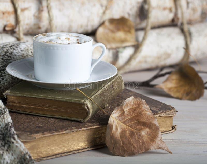 Livros velhos da queda do cappuccino imagens de stock royalty free