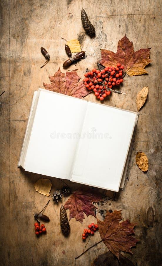 Livros velhos e folhas de outono fotos de stock royalty free