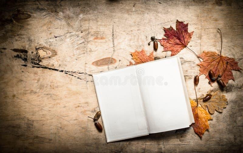 Livros velhos e folhas de outono imagem de stock royalty free
