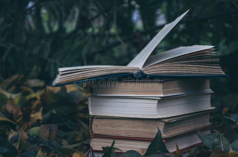 Livros velhos na perspectiva das folhas amarelas caídas no jardim do outono fotos de stock
