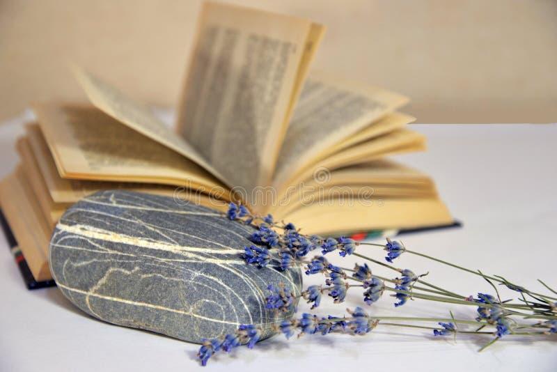 Livros velhos olá! das flores minguantes passadas em um vaso Pedra do mar fotos de stock
