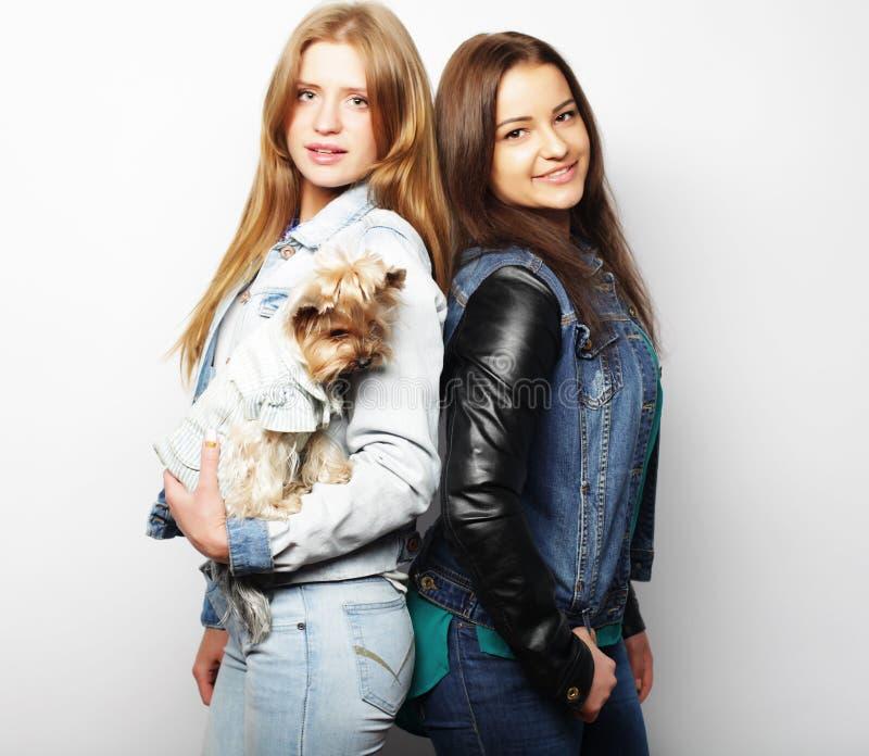 Livsstil och folkbegrepp: Två ung flickavänner som tillsammans står och rymmer hunden royaltyfria foton