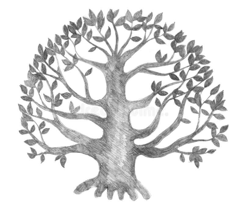 livstid skissar treen vektor illustrationer