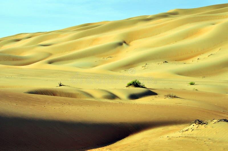 Liwa sanddyn royaltyfri fotografi