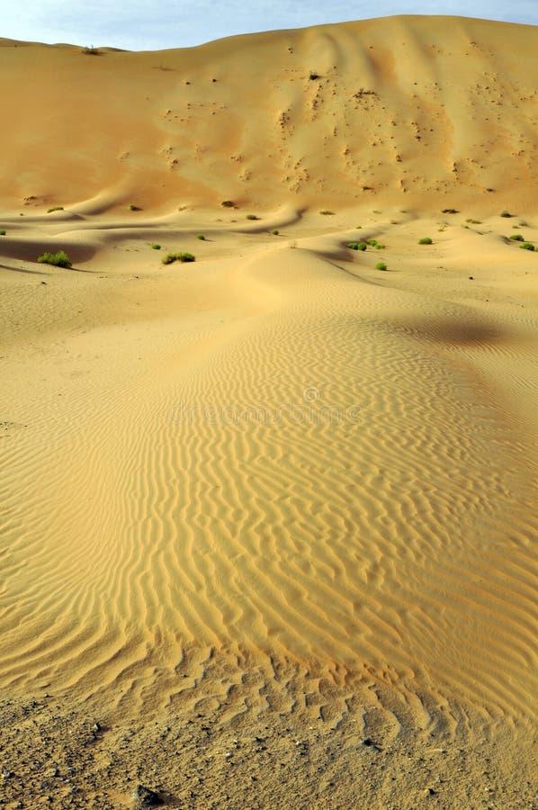 Liwa sanddyn & krusningar royaltyfria bilder