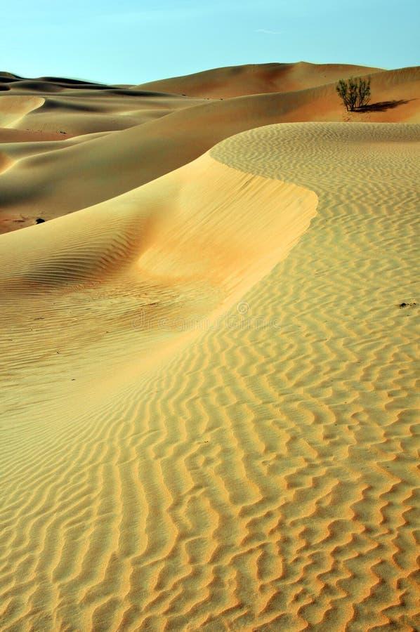 Liwa sandkrusningar arkivfoton